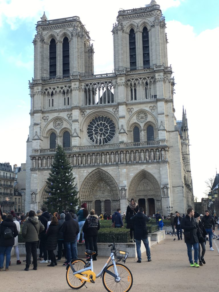 Family Reunion. Notre Dame Cathedral