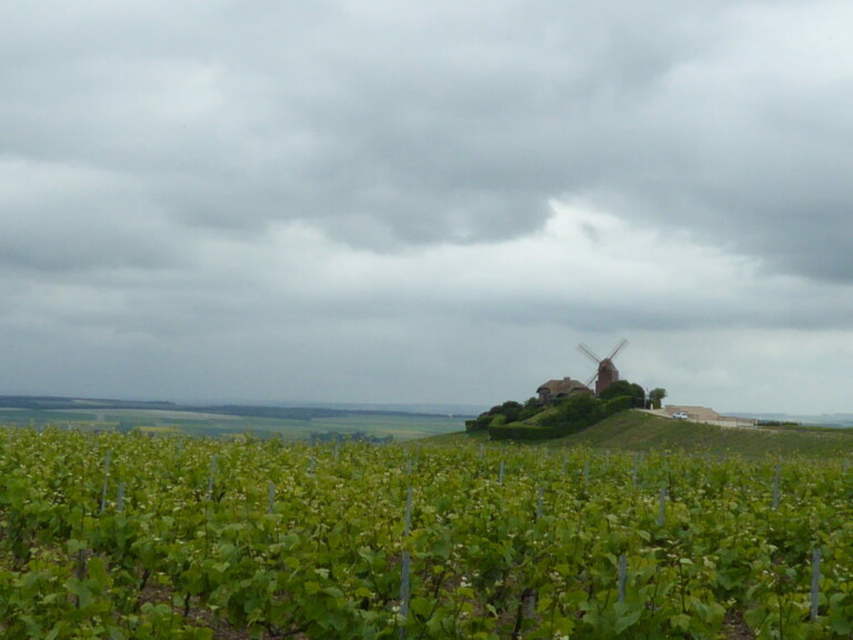 Cloudy Epernay