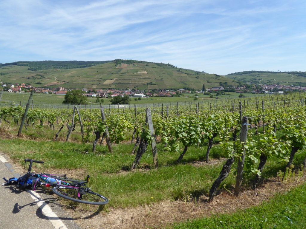 Road & Bike Trip