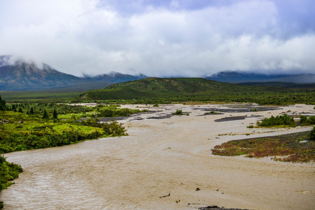 Muddy Savage River, Alaska after the overnight torrential rain