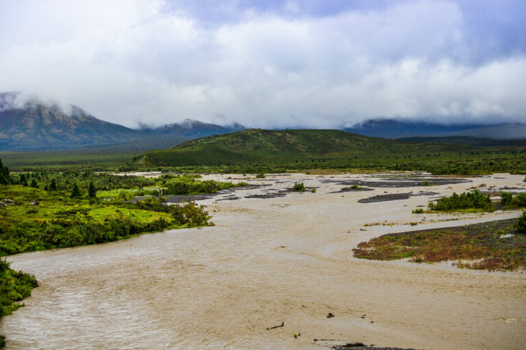 Muddy Savage River after the overnight torrential rain